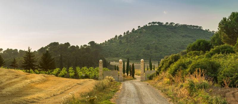Rioja Alta visita bodega Hacienda EL Ternero Puertas Abiertas 2018